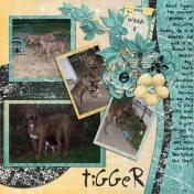 Welcome, Tigger
