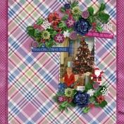 Mackenzie- Christmas 2008