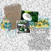 spring in my ste