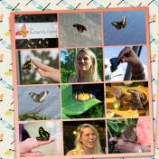 Butterflies, Blooms & Birds (left)