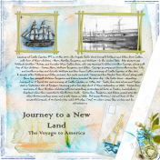 Journey to a New Land