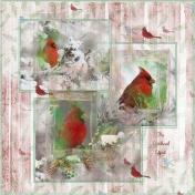 Woodland Winter-The Cardinal Effect