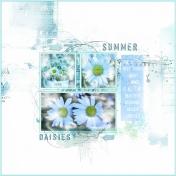 Summer Daisies-June