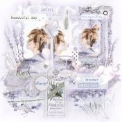 Lavender Field Of Dreams