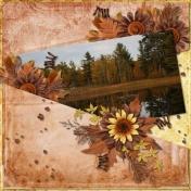 Still Autumn Waters