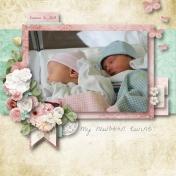 My Newborn Twins