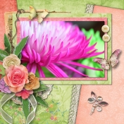 Macro Blossom