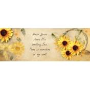 Sunflower fb cover