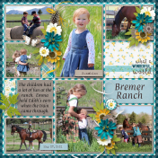 The Bremer Ranch
