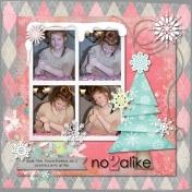 No 2 Alike