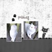 En noir et blanc 3