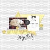 Snapshots 2
