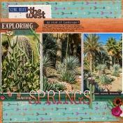 2018 Springs Cacti