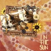 In the Sun1