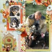 Fall Puppies