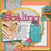 Scaling Day Feb.2nd