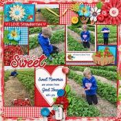 Strawberry Picking (2019)