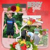 Berry Picking 2020