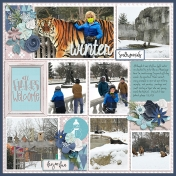 Winter at the Zoo