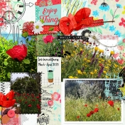 Lockdown wildflowers