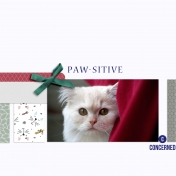paw-sitive