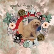 Spoiled doggie