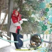 snow- jan 2011 rs