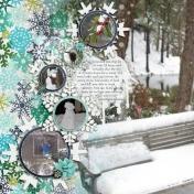 snow- jan 2011 ls