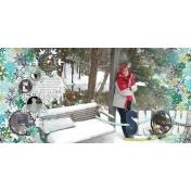 snow- jan 2011