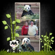 Yang Yang the Panda (again)