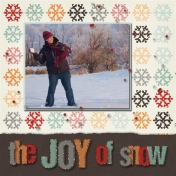 the JOY of snow