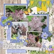 2012-05-17 My Lilacs cap_2017MayTemps2-L