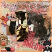2018-06-13 Kennedy&Melinda waw_thecatsmeow