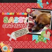 2019-11-06 sweet&sassy