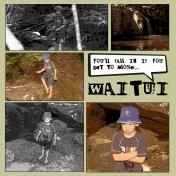 Waitui Falls pg1