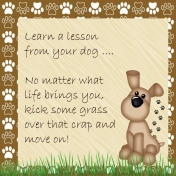 Life Lesson From a Dog