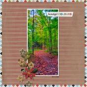 Fall Pathways