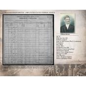 1900 Census Record for William Boston