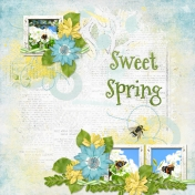 Sweet Spring 4