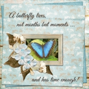 A butterfly lives not months by moments...