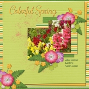 Colorful Spring...3