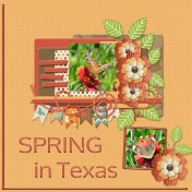 SPRING in Texas