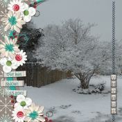 WINTER (THROUGH THE YEAR- jcd)