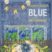 Texas turns BLUE in Spring! (ads)