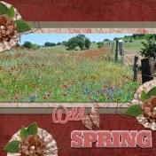 Wild Spring (pbs)