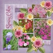 Spring Color (ADS)