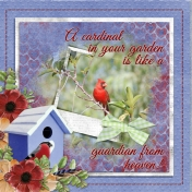 A cardinal in the garden is like a guardian from heaven!