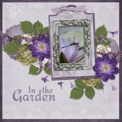 In the garden (ads-dragonfly)