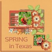 Spring in Texas (jcd)