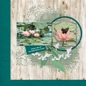 water lilies (ADB Designs)